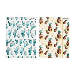 Zložka - kaktus, ananás