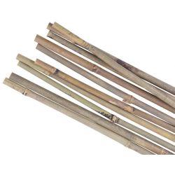 Tyč Garden KBT 2100/12-14 mm, 10 ks, bambus