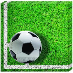 Servítky Football 33x33cm 20ks
